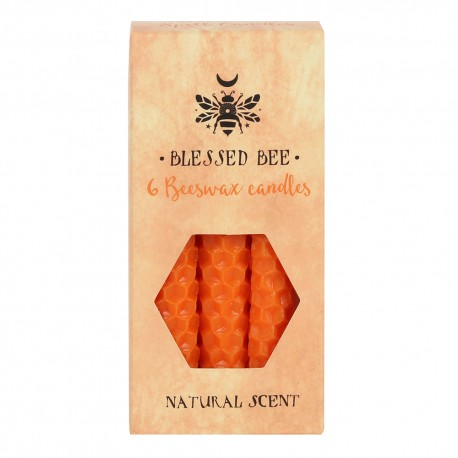 Automatic Pet Feeder Auto Cat Dog Timed Programmable Food Dispenser Feeder